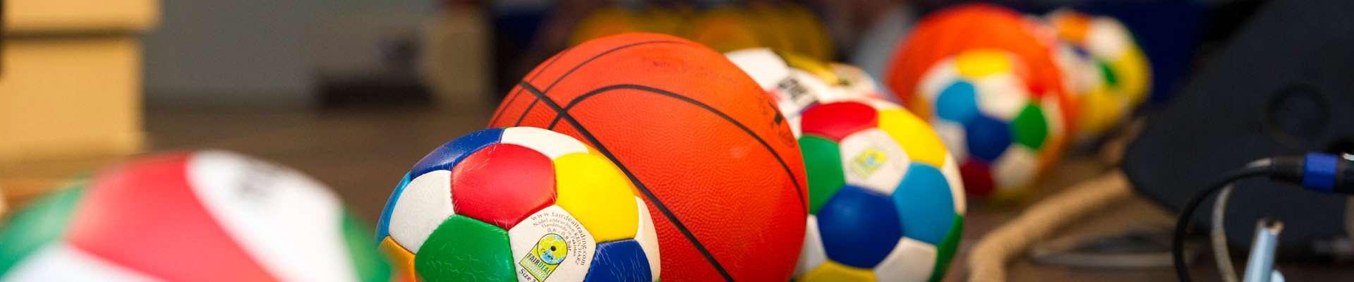 Teaserbild 1000x1000: verschiedene Bälle in Sporthalle