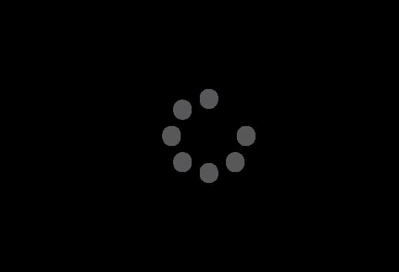 Grafik Tätigkeitsfelder rosenbaum nagy